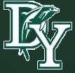 D-Y Dolphins